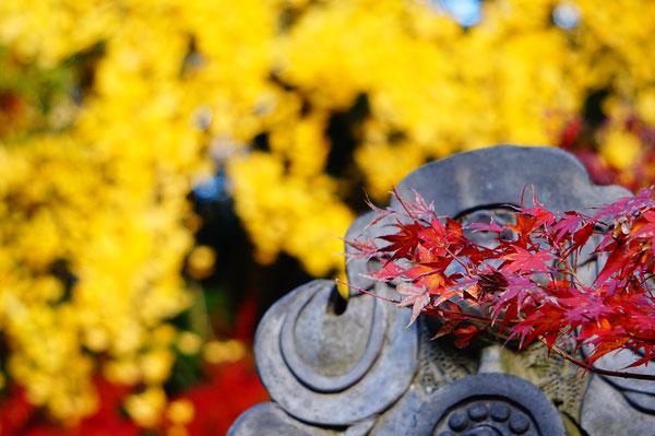 ここは蓮台寺の中です。