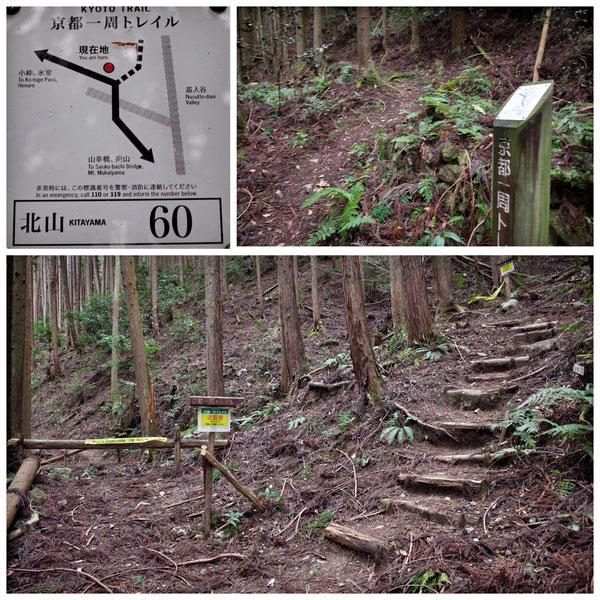 【京都トレイル北山西部コース】「北山60」