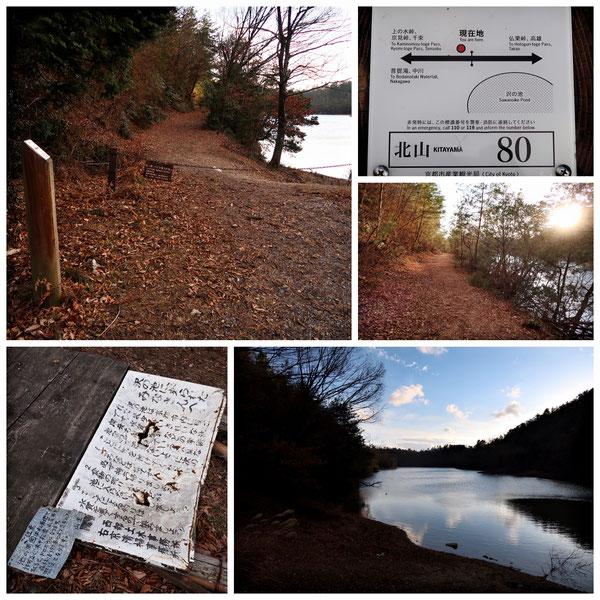 【京都トレイル北山西部コース】「北山80」沢の池