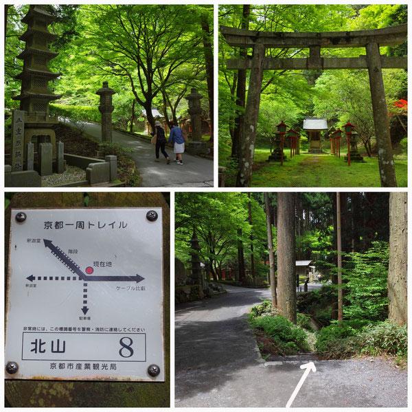 京都一周トレイル 北山東部コース 「北山8」(比叡山)