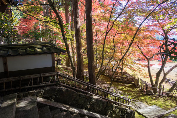 京都亀岡 苗秀寺の紅葉