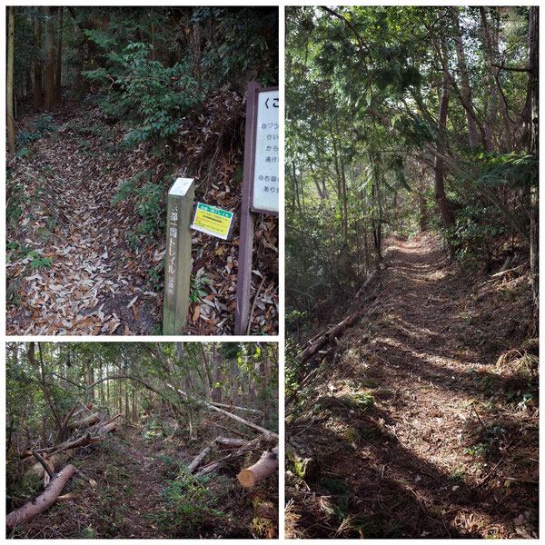 【京都トレイル北山西部コース】「北山68」