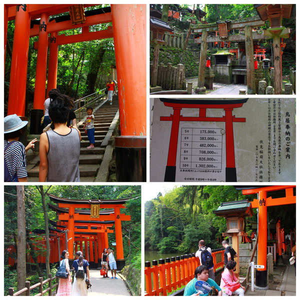京都一周トレイル 東山コース 伏見稲荷大社(千本鳥居)
