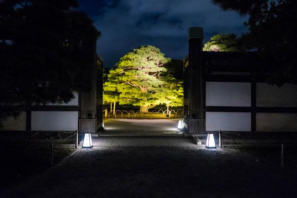 京都ライトアップイベント「京の七夕」二条城会場