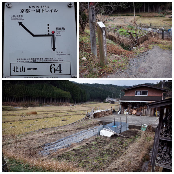 【京都トレイル北山西部コース】「北山64」