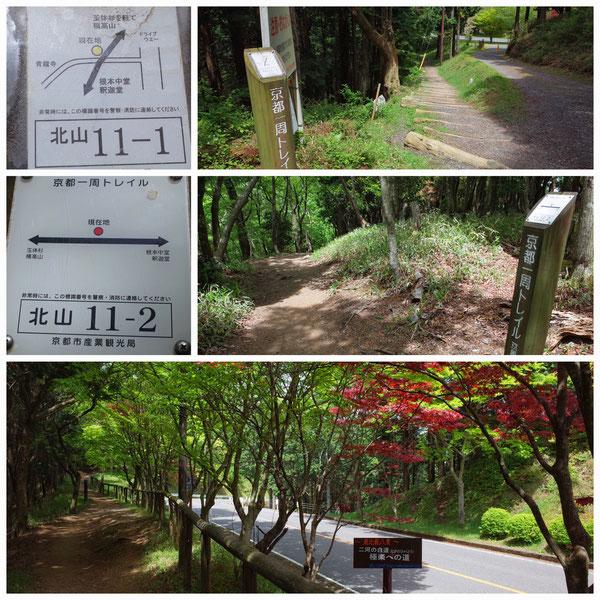 京都一周トレイル 北山東部コース 「北山11-1」(比叡山)