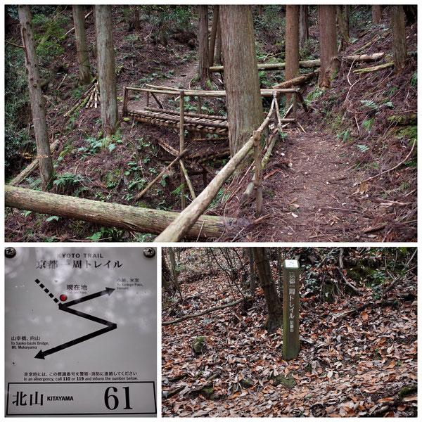 【京都トレイル北山西部コース】「北山61」