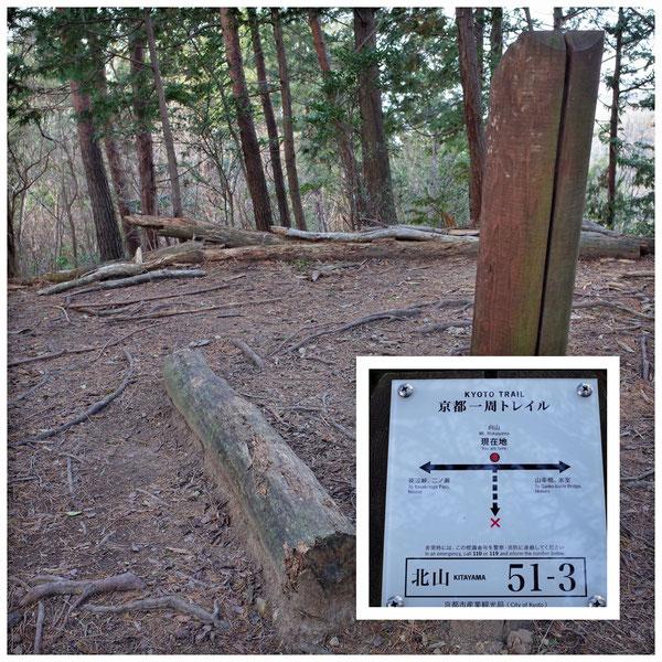 【京都トレイル北山西部コース】「北山51-3」向山