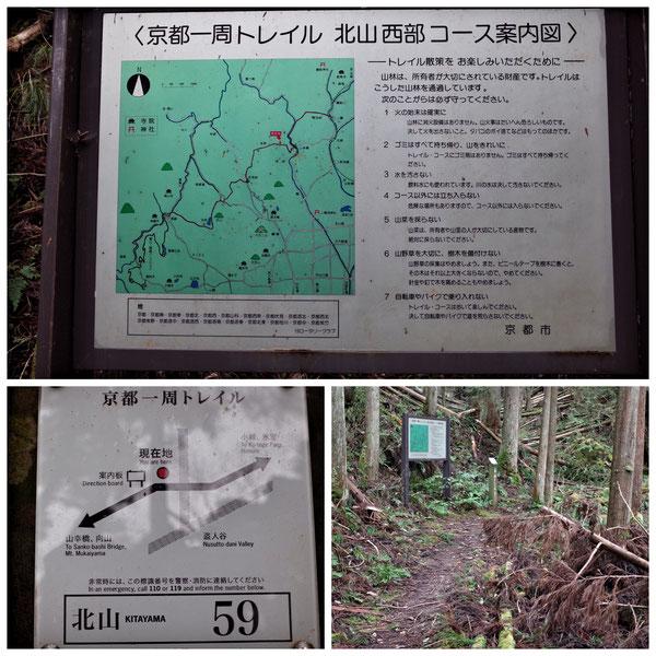 【京都トレイル北山西部コース】「北山59」