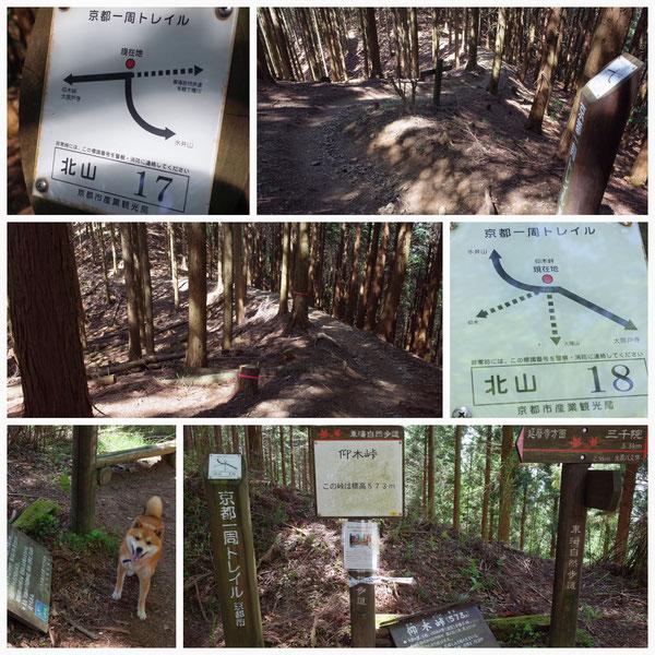 京都一周トレイル 北山東部コース 「北山18」(仰木山)