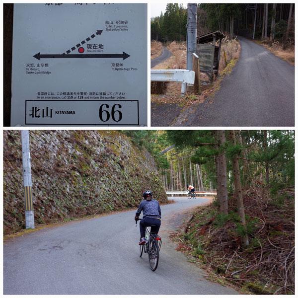 【京都トレイル北山西部コース】「北山66」