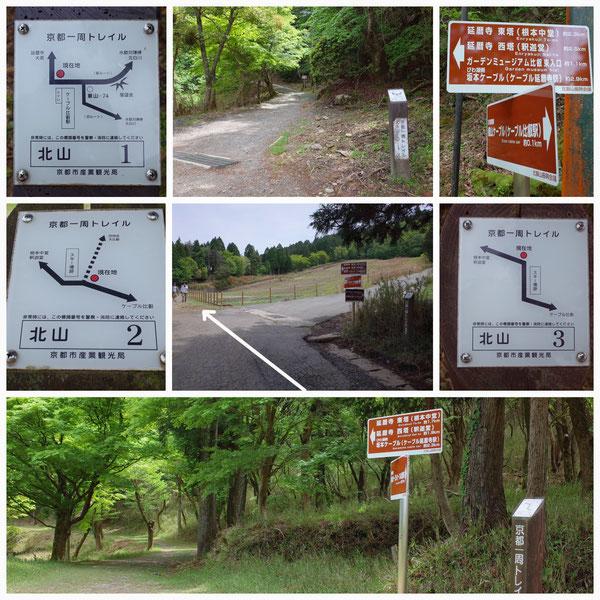 京都一周トレイル 北山東部コース 「北山1」(比叡山)