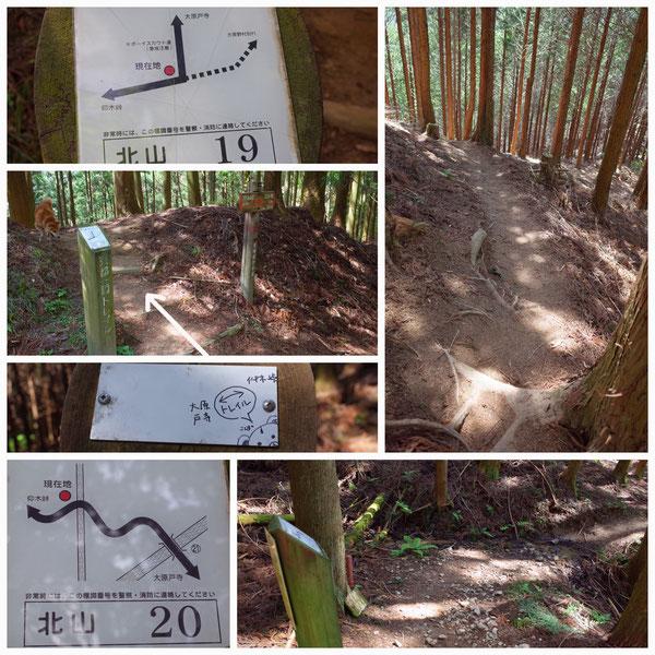 京都一周トレイル 北山東部コース 「北山19」