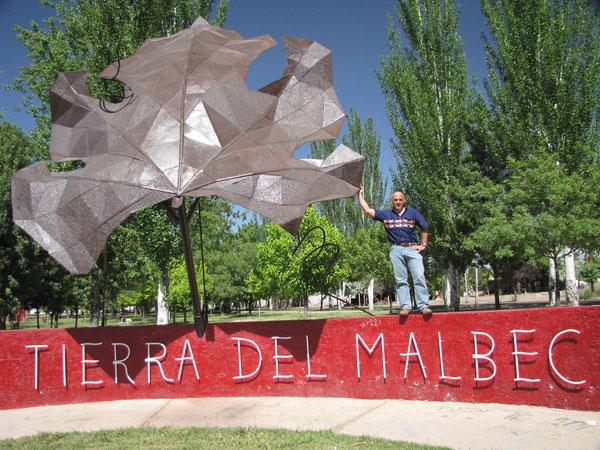 malbec : le cépage roi d'Argentine