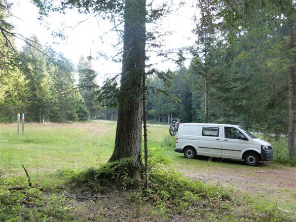Camping-car Volkswagen T5 - situation en forêt