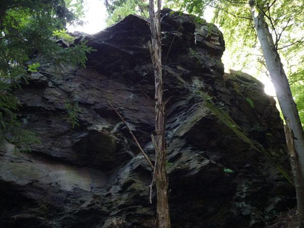 Hirschenstein an der alten Aschbergschanze