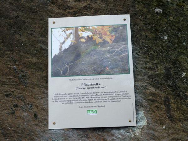 neue Infotafel im Klettergebiet Steinicht