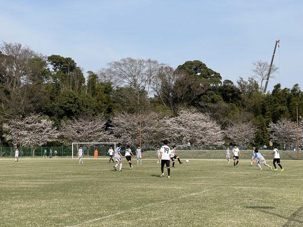 今日も満開の桜の中、たくさんのチームと交流する事が出来ました!