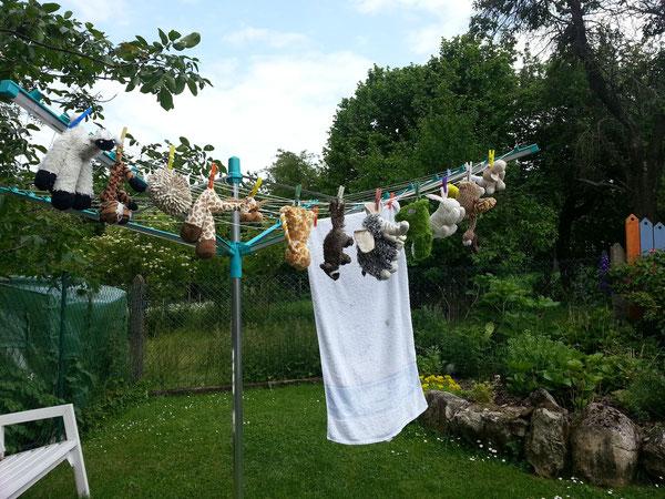 Meine Freunde haben Waschtag.