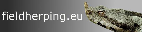 Englischsprachiges Forum mit vielen Infos und tollen Reiseberichten (betrieben von Mario Schweiger)