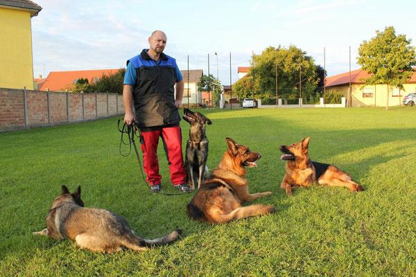 Walter und seine Hunde