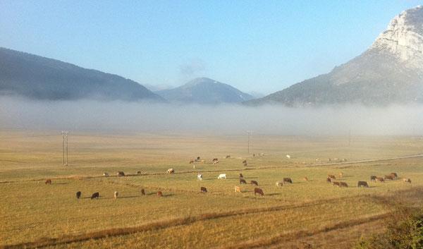 Village de Caille dans les brumes matinales