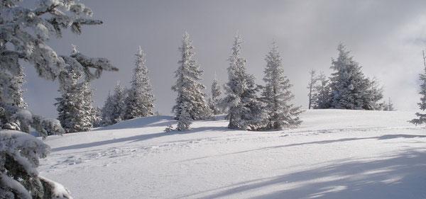 ... Gipfelplateau des Lahngangkogels