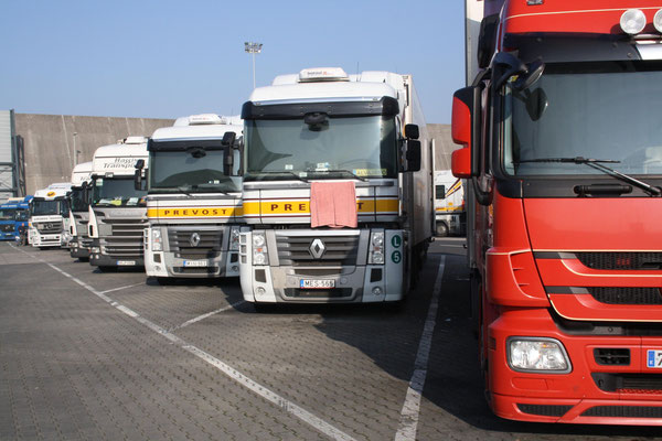 Trucks lined up at Rhine-Main Airport waiting for loading of shipments / source: hs