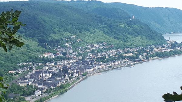 Blick auf Kamp-Bornhofen vom Wanderweg Rheinsteig