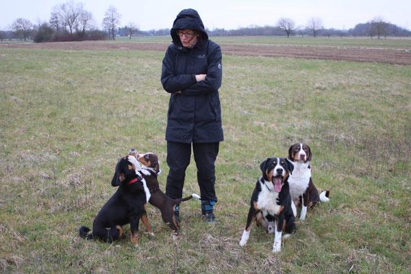 Appenzeller Sennenhunde aus dem Flößerdorf 2018