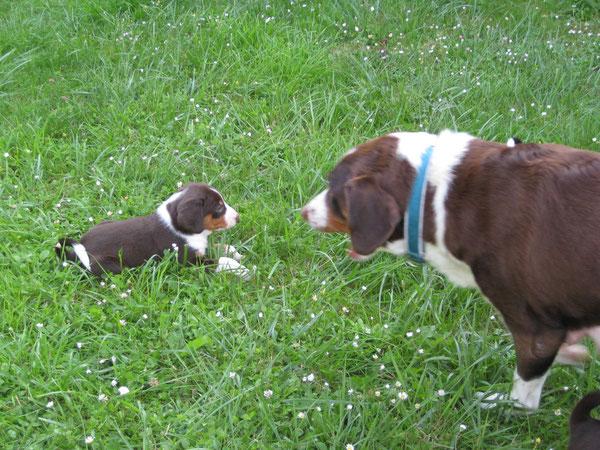 Bente aus dem Flößerdorf mit Mama Cleo