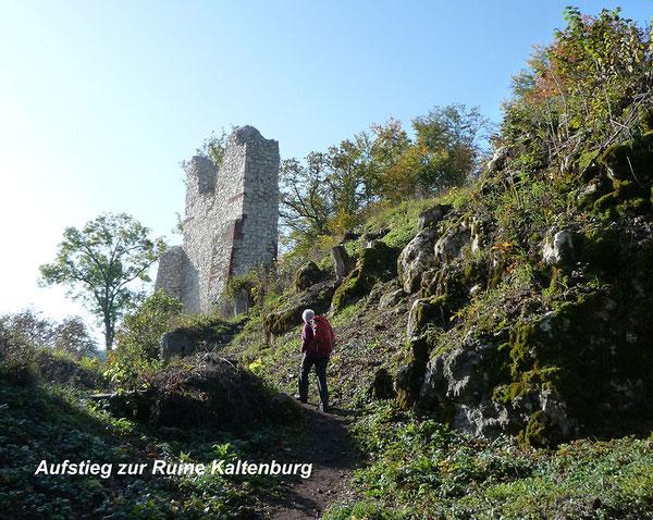 Jahreshauptwanderung 2020 - Ruine Kaltenburg