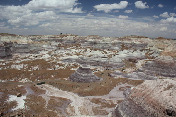 Foto: Blue Mesa, Petrified Forest