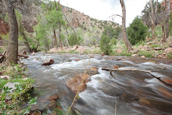 Foto: An der Phantom Canyon Road