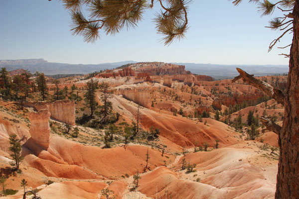 Foto: Bryce Canyon
