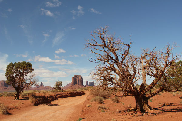 Foto: Im Monument Valley