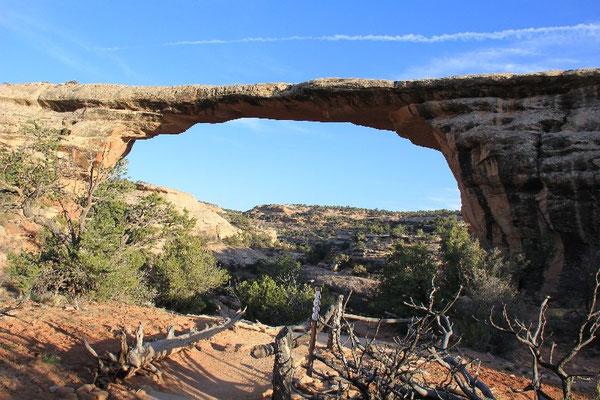 Foto: Natural Bridges NP