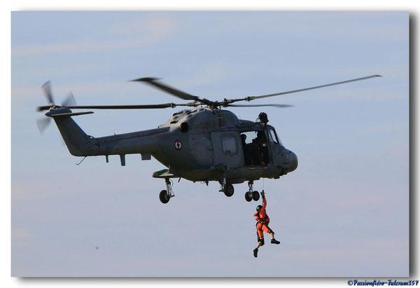 Lynx en action