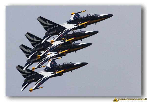 The Black Eagles  (cliquer sur l'image pour accéder à la galerie)