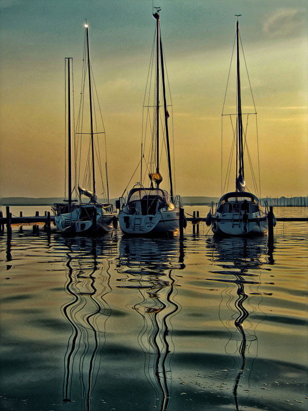 Segelschiffe am Steinhuder Meer
