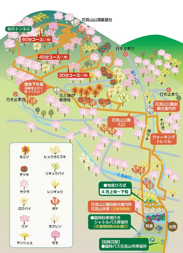 花見山イラストマップ地図