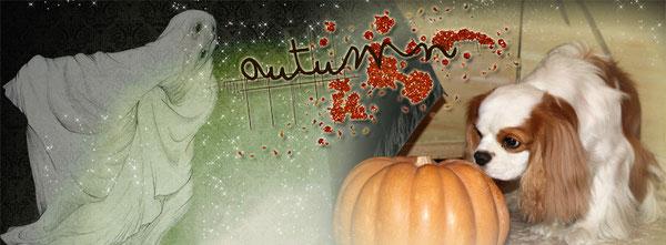 L'Autunno e Halloween...con Scott