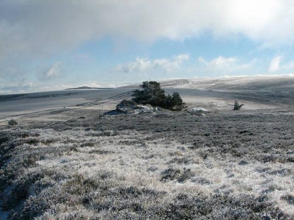 Chaumes de Pierre sur Haute en hiver