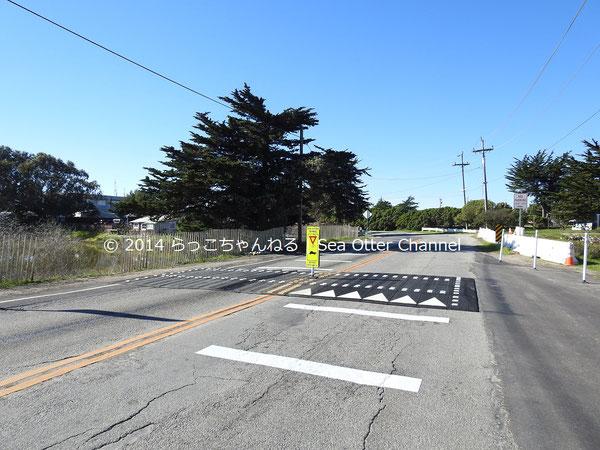 世界で唯一の「ラッコ用横断歩道」が完成した。