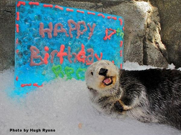 2014年、17歳の誕生日を祝うブルック