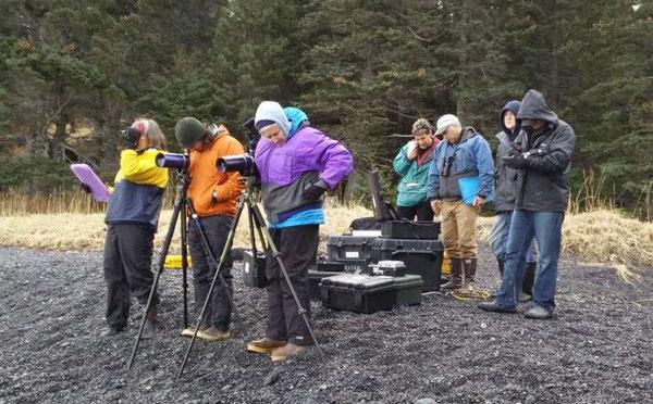 陸からラッコが食べる様子を観察する研究者たち。Credit: ACUASI
