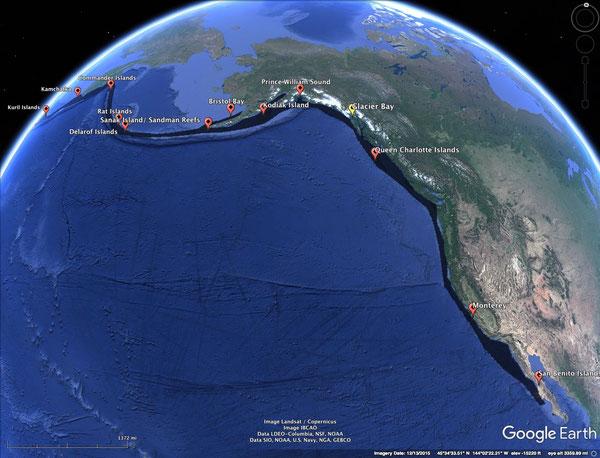 ラッコの歴史的な生息域(灰色)と1911年に散在していた個体群(赤い印)。クイーンシャーロット諸島とサンベニート諸島の個体具運は1920年までに絶滅した。