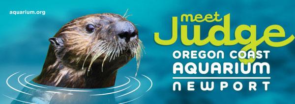 ジャッジは2013年の水族館の広告キャンペーンの顔になった。