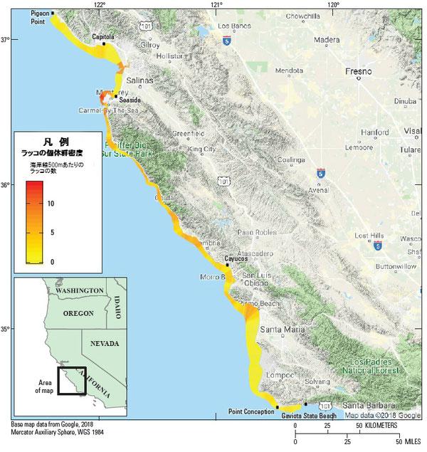 図4:カリフォルニア本土中央沿岸部におけるカリフォルニアラッコ(Enhydra lutris nereis)の地域ごとの個体密度のバリエーション(沿岸500メートルあたりのラッコの数)。サンニコラス島の空間的に明白な分析が現在おこなわれていないため、サンニコラス島のデータは示されていない。