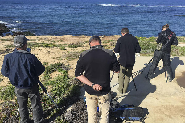 アメリカ地質調査所(USGS)西部生態系研究センターとアメリカ魚類野生生物局の研究者らがカリフォルニア沿岸でカリフォルニアラッコを探している